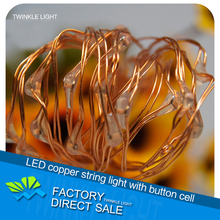 LED copper string light with button cell party stage wedding decorative holiday Christmas lights free shipping(China (Mainland))