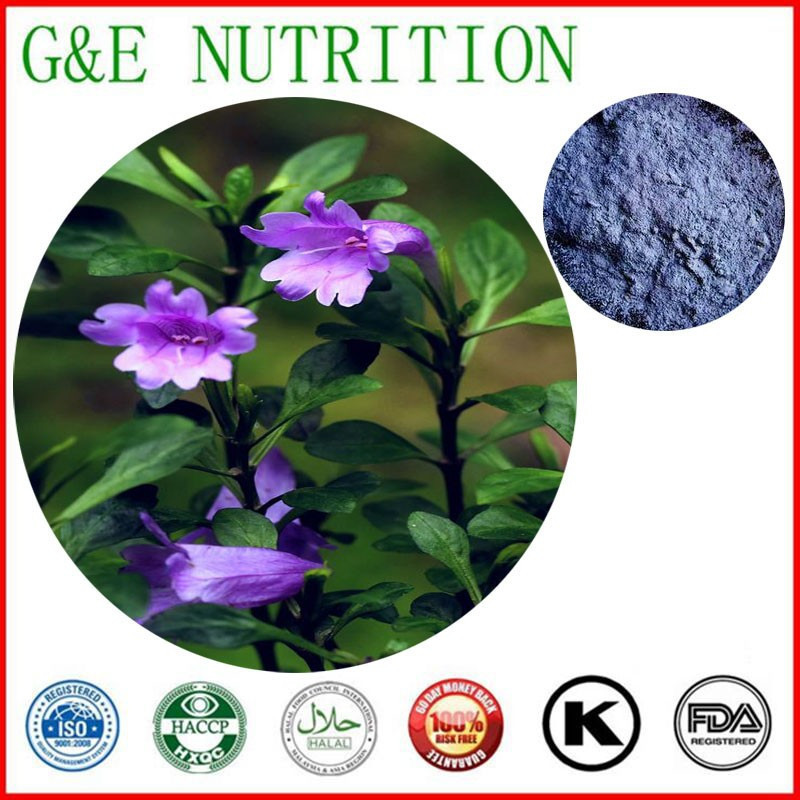 100% natural Indigo Naturalis Extract , Indigo Naturalis Extract Powder ,  Organic Indigo fruit extract   10:1 900g