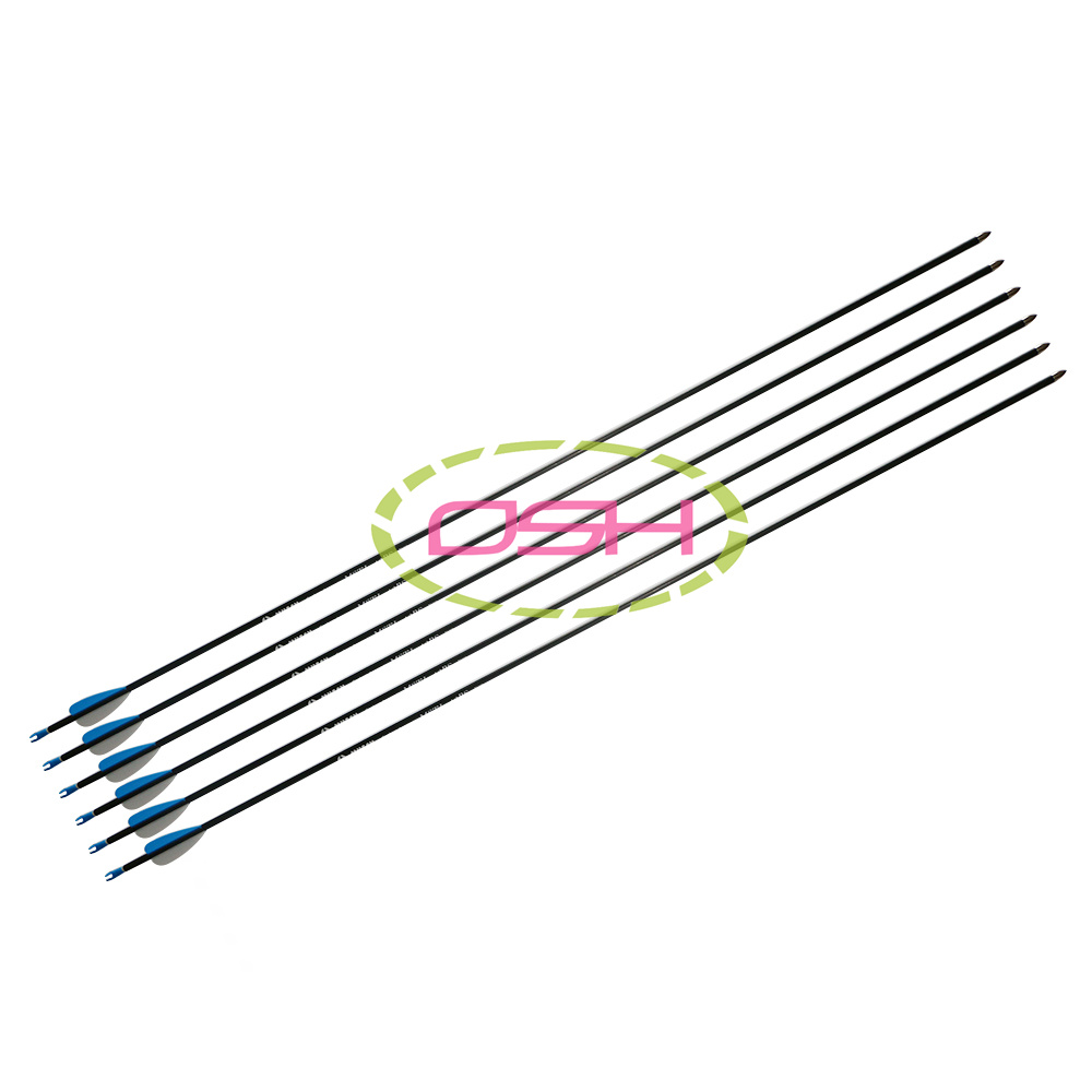 36pcs Carbon Archery Arrow 32inch Target Shooting Outdoor Hunting Bows Arrows for Traditional Longbow <br><br>Aliexpress