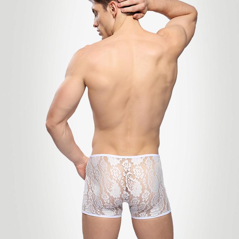 Bandashi sexy men s underwear boxers lace sexy underwear waist transparent male boxer