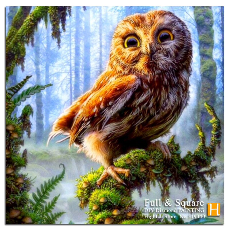 Factory Wholesale diy diamond painting cross stitch animal owl home decor 100% square drill full diamond embroidery wall art(China (Mainland))