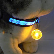 A6 1pcs New Chic Nylon Pet Cat dog Puppy LED Flashing Dog Collar Safety Night Light Pendant Collars For Dogs 6  colors  N0008 P