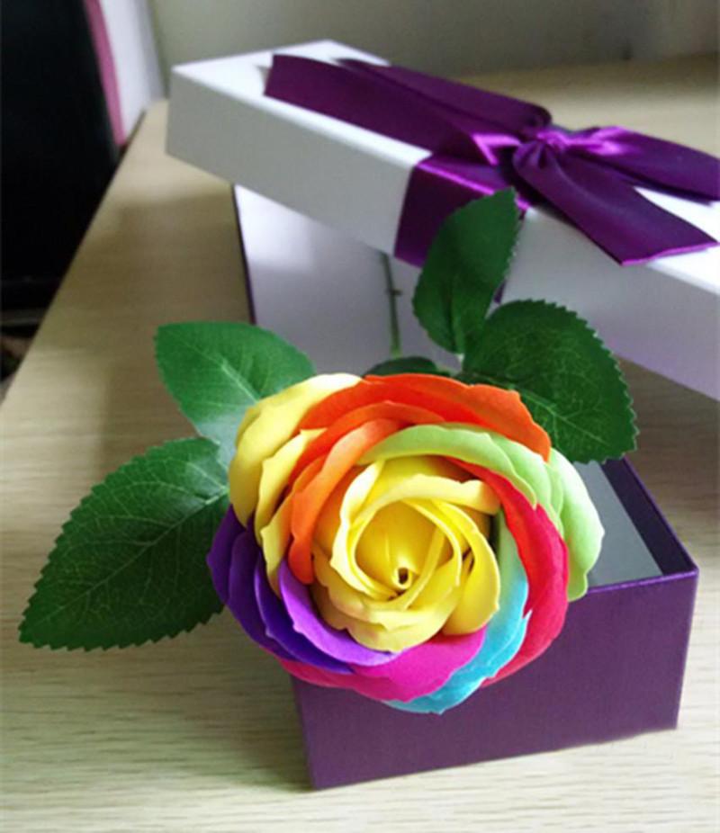 150 pcs seeds rare holland holland rainbow rose flower for Holland rainbow rose seeds