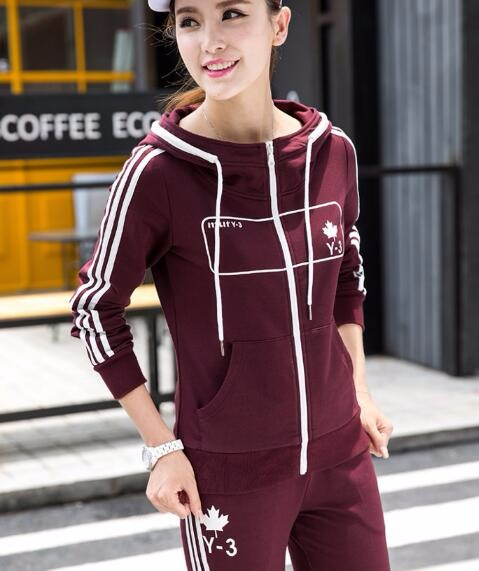 2016 Autumn Embroidery Hoodies Women Cotton Casual Hooded Tracksuit Sportsuit Two Piece Set Plus Size M L XL 2XL 3XL Hoodie