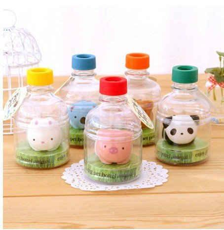 Hot Sale Creative Desktop potted Absorbent bottle Pet potted office home decoration birthday small gifts(China (Mainland))
