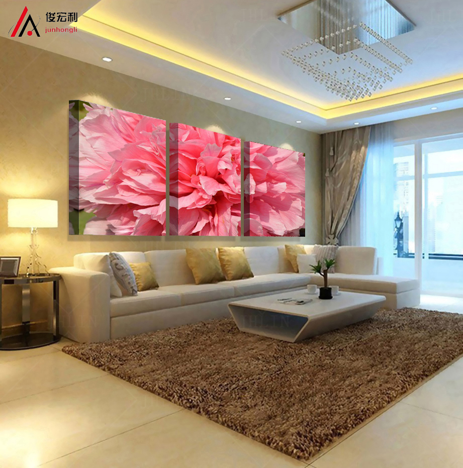 modern oil painting cuadros decoracion salon 3 piece canvas wall art pop art canvas Modular painting flowers wall decor panel(China (Mainland))