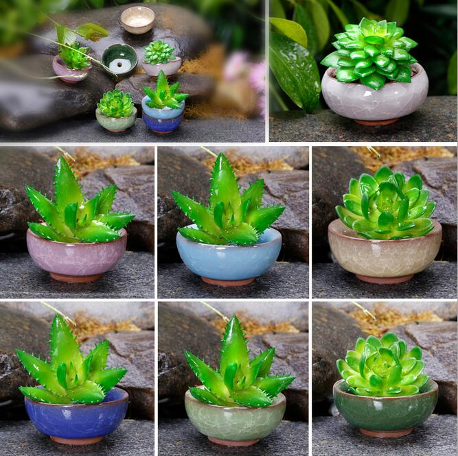 1 piece (7x7x3cm please look at the size, very cute little more meat pots ) Binglie ceramic pots colorful mini fleshy pots(China (Mainland))
