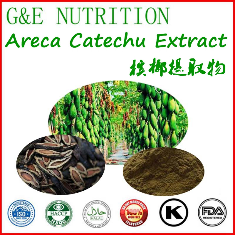 GMP factory supply Hot sale high quality Areca catechu extract 500g<br><br>Aliexpress