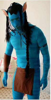 The avatar clothing Cartoon clothing, lycra tights custom doll costumes, The avatar mascot clothes(China (Mainland))