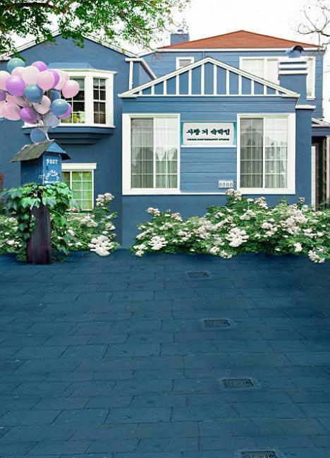 600CM*300CM backgroundsKorean house mailbox photography backdropsvinyl photography backdrop 3104 LK <br><br>Aliexpress