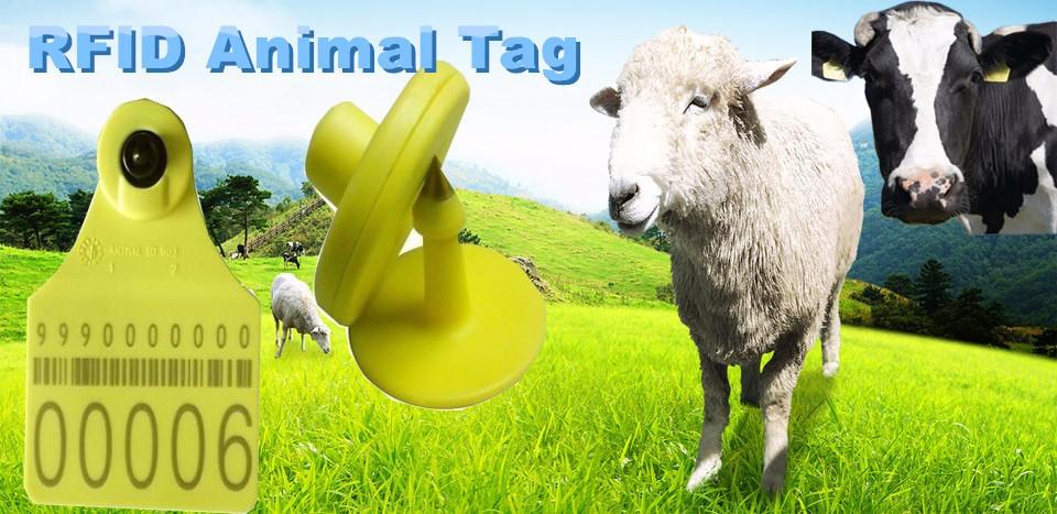 ヾ ノ125khz Rfid Animal ᗖ Ear Ear Tag With Tk4100 Chips
