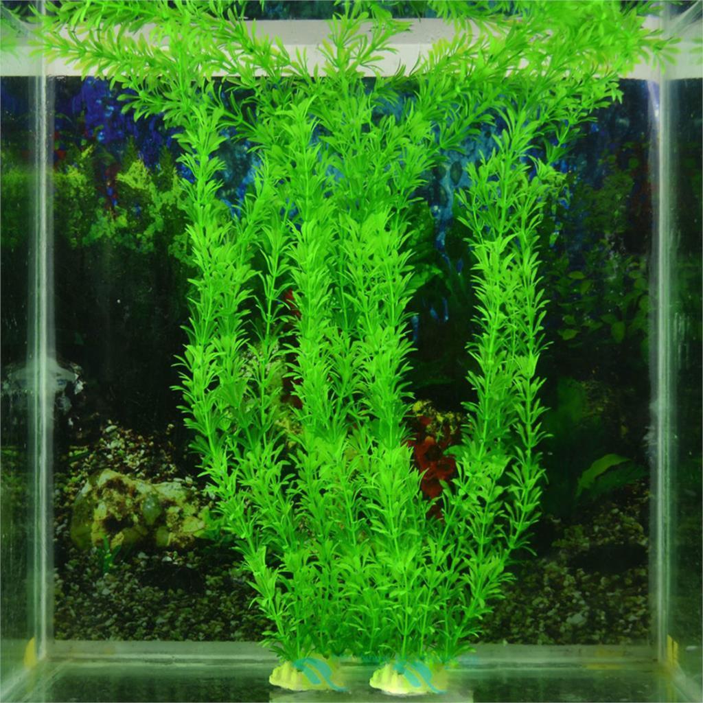 décoration pour gros aquarium