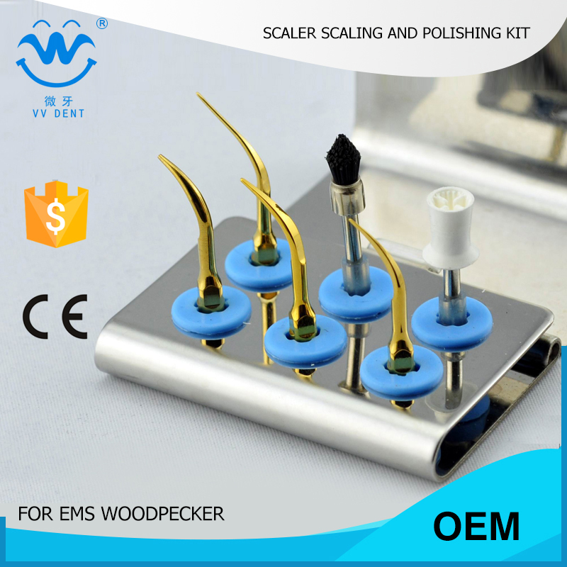 10 pcs ESPKG  home dental cleaning kit for scaling and polishing fit  EMS scaler tips and woodpecker mectron w&amp;h piezo scaler<br><br>Aliexpress