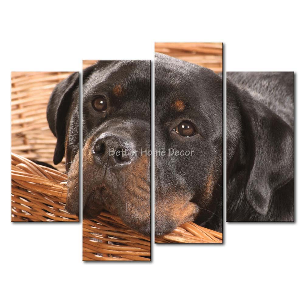 3 Piece Wall Art Painting Rottweiler In The Basket Picture Print On Canvas Animal 4 5 The Picture Home Decor Oil Prints(China (Mainland))