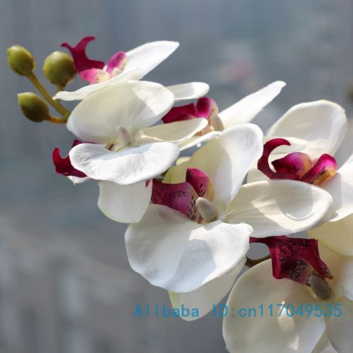 1 Stem Silk Flower Artificial Moth Orchid Butterfly Orchid for new House Home Wedding Festival Decoration 4 types 12 Colors F152(China (Mainland))