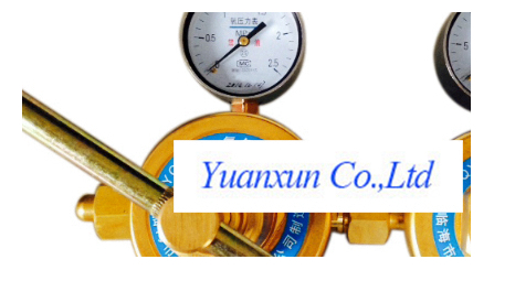 Dual-stage Oxygen Regulator YY11 type nitrogen hydrogen carbon dioxide pressure reducer has Y11(China (Mainland))