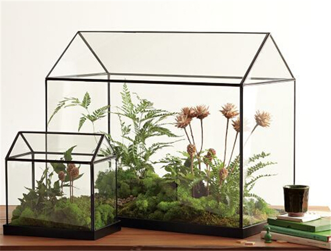 Cool Mini Handmade Tabletop Glass Green Houses Small Arched Greenhouse Wardian Case Miniature Landscape Garden Terrarium