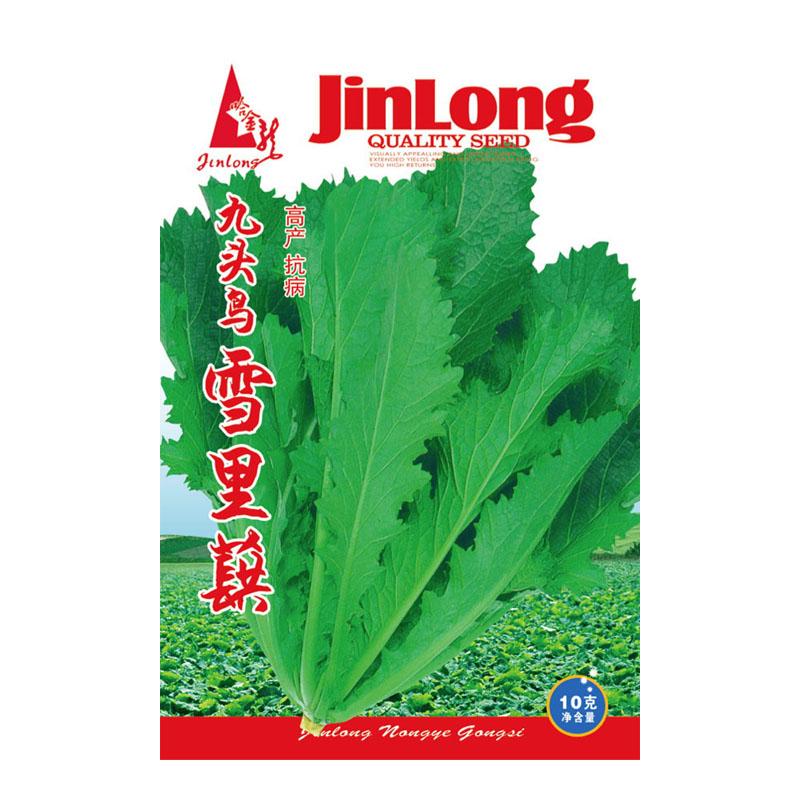 Original Packaging 10g/pack Potherb mustard pickled vegetables Mustard Seed Brassica Juncea Mustard Leaf Vegetable free shipping(China (Mainland))