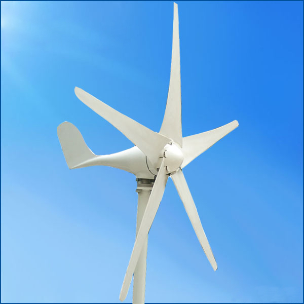 100w 12V/24V small horizontal wind turbine generator(China (Mainland))