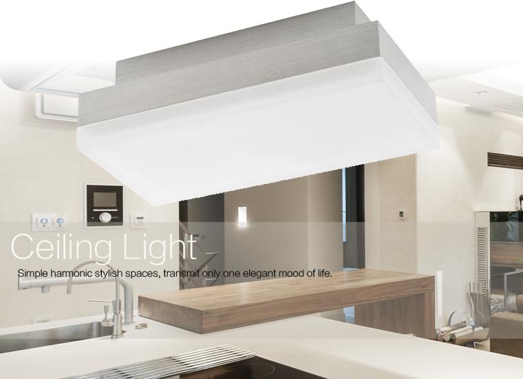 CE/ROHS Unique Design Modern Indoor Acrylic Led Ceiling Light(China (Mainland))