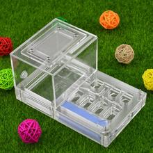 16*10*8.5cm moisture with feeding area ant nest ,ant farm acryl, insect ant nests villa new pet advanced mania for house ants(China (Mainland))