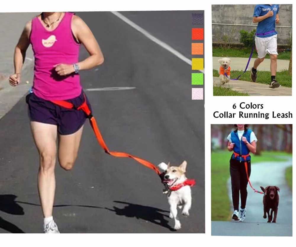 Free shipping Red Purple Yellow Green Pink hands free Walking Running Jogging Puppy dog  leashes lead collars(China (Mainland))