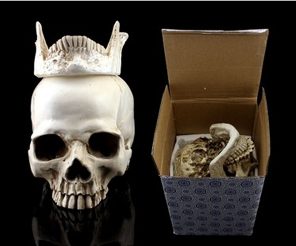Human Skull Replica Resin Model Medical Realistic NEW 11x7x8.5cm Party Masks skeleton Collection Handicraft terror fine arts(China (Mainland))