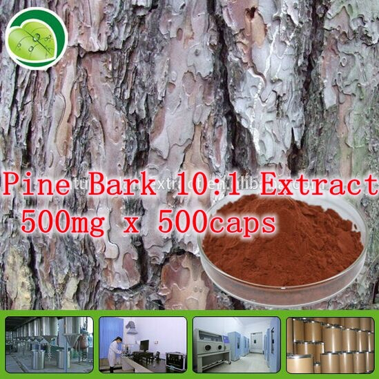 5Pack High Quality Natural Pine Bark 10:1 Extract 500mg x 500caps free shipping<br><br>Aliexpress