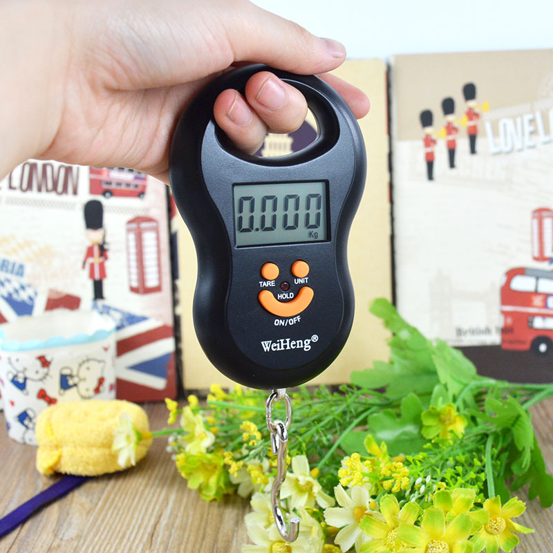 Scale Hanging 50Kg /5g Digital BackLight Fishing Pocket Weight Luggage Scales(China (Mainland))