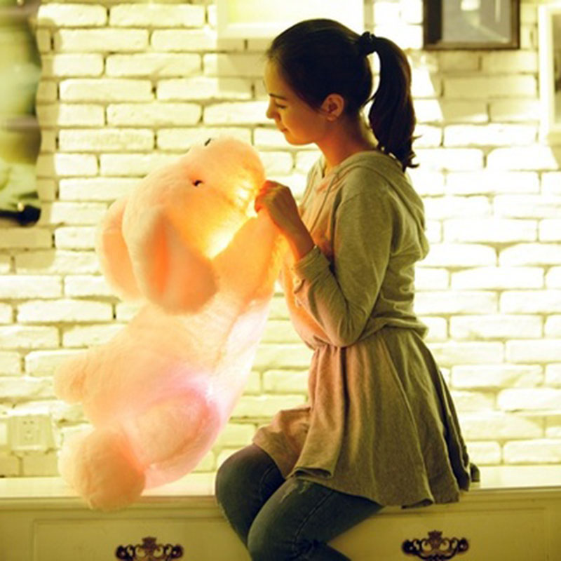 50CM Creative toy Cute Inductive dog nightlight plush toy LED glow pillow soft light up stuff toy dog pet quality(China (Mainland))