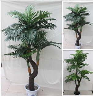 Office decoration plants potted plants green plant manufacturers wholesale price mini potted bonsai landing green plant(China (Mainland))