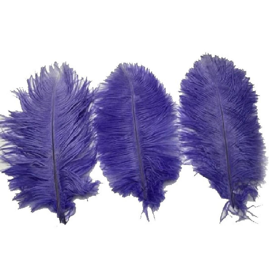 2016 мода новый 10 шт. фиолетовый страусиных перьев 20 - 25 см свадебные украшения оперение аксессуары ремесла красивая
