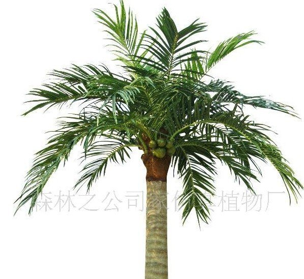 hotel/ home decoration,artificial 150cm coconut palm leaves,artificial plants,free shipping(China (Mainland))