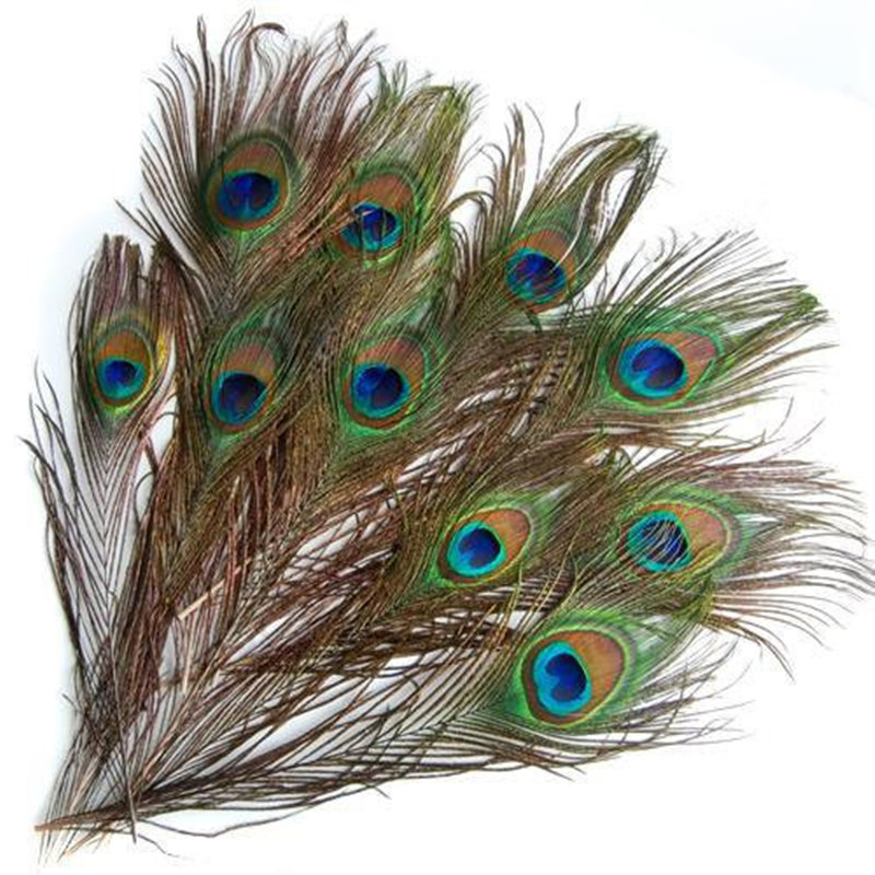 10Pcs/set 10-12 Inches Real Natural Peacock Eye Tail Feathers Beautiful Natural Feathers Wedding Party Home Hairs DIY Decoration(China (Mainland))