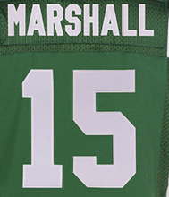 Stitched 96 Muhammad Wilkerson 15 Brandon Marshall 24 Darrelle Revis 7 Geno Smith 87 Eric Decker 12 Joe Namath Elite Jerseys(China (Mainland))