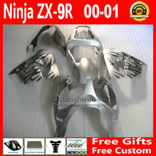 motorcycle fairings Kawasaki Customize free ZX 9R 2000 2001 ZX9R 00 01 Ninja silver black flame fairing+7Gifts - Welcome Shopping's store