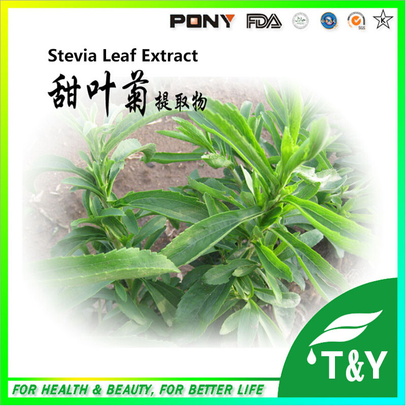 factory supply hot sale wholesale bulk stevia extract 98%<br><br>Aliexpress