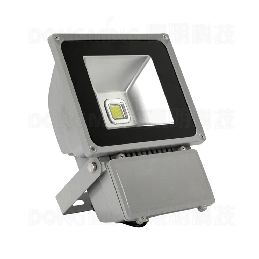 Фотография high power 80W LED Flood Light outdoor Waterproof IP65 cold/warm white RGB LED Floodlight spotlight with 24key Remote controller