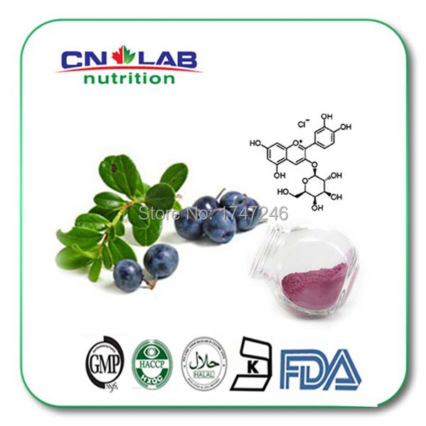 Free shipping By International EMS100% Natural Fruit Extract Acai Berry 300G/bag(China (Mainland))