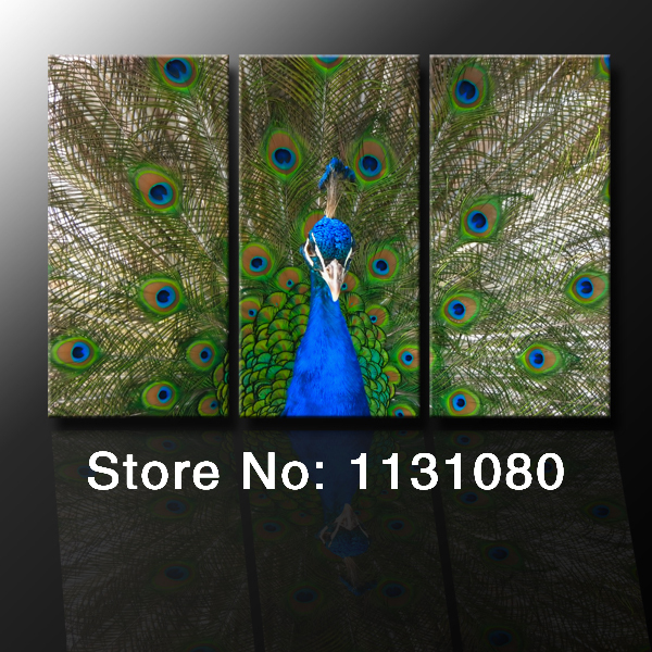 Buy no frame canvas only 3 pieces peacock for Where can i buy peacock feathers craft store