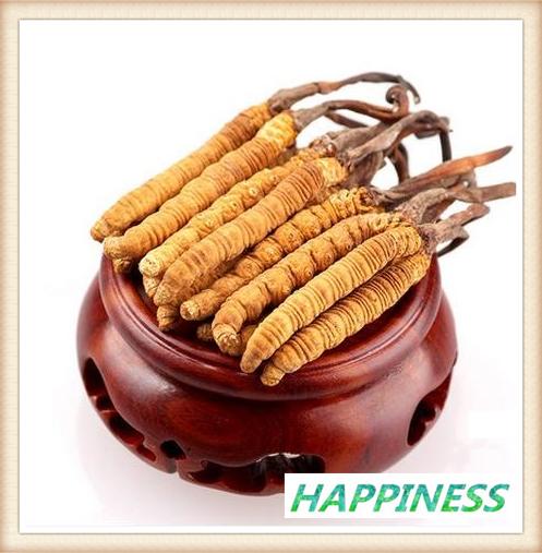 !1 кг Кордицепса китайского, экстракт порошка 40% полисахарид Кордицепса потенции / китайский гусеничный гриб экстракт