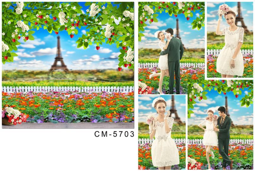 wedding background photography 600cmX300cm curtain Eiffel Tower with flowers fence  CM-5703<br><br>Aliexpress