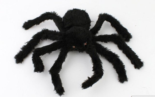 Best selling! Halloween all the saint  toy Spider insect fun Solar Toy good for gift Free shipping,