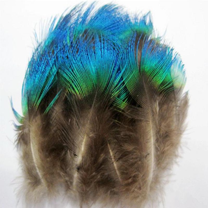 Popular bulk peacock feathers buy cheap bulk peacock for Cheap feathers for crafts