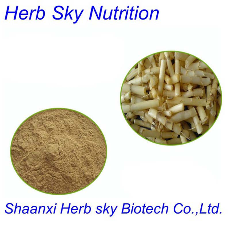 Botanical herb extract Lalang Grass Rhizome Extract 10:1 500g/lot
