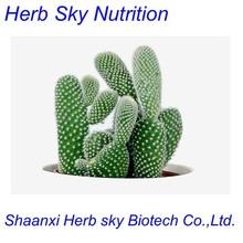 100% natural Cactus Extract Triterpenoid saponins 10:1 100g/lot(China (Mainland))
