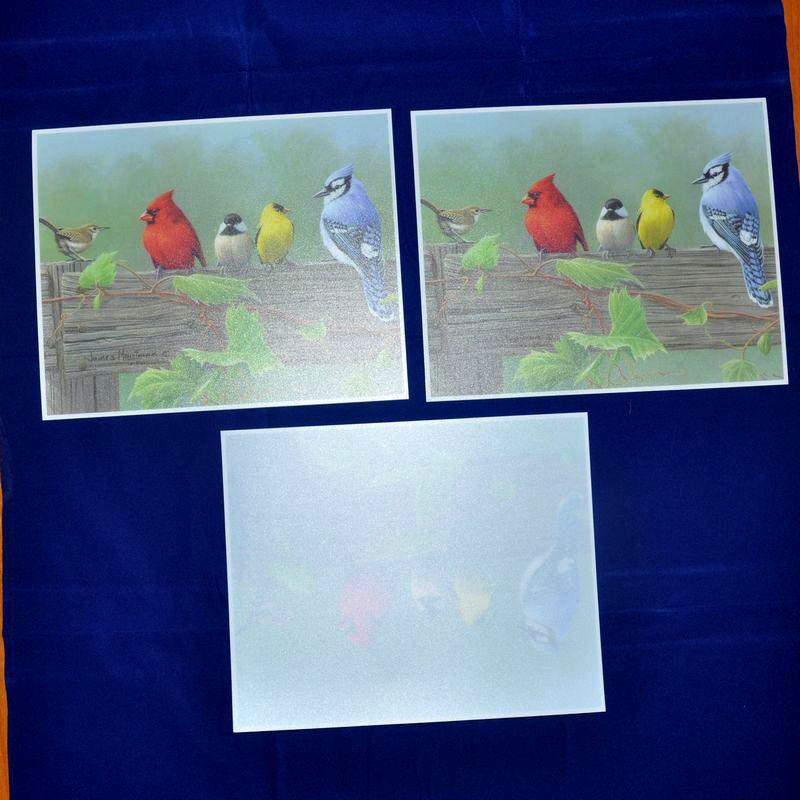 10Pcs/lot Placemat fashion printing pp dining table mat waterproof table cloth slip-resistant pad(China (Mainland))