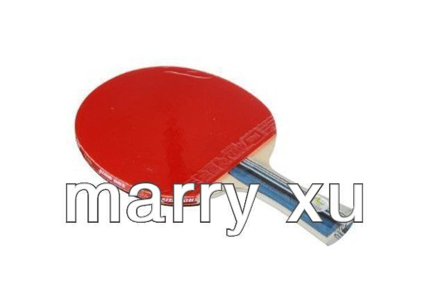 ping pong racket DHS X2002 New X-Series Professional Table Tennis Racket