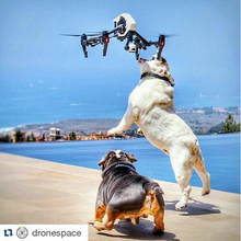 2016 DJI Inspire 1 PRO 3-Axis Gimbal drones with Zemuse X5 4K Camera and Quadcopter with camera hd