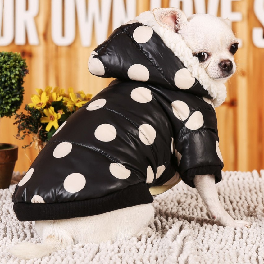 Pampered Puppy Designer Dog Clothing Luxury Dog Beds Small